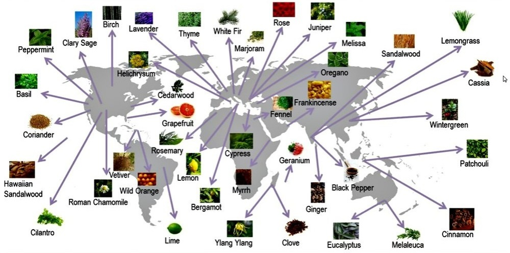 2013 sourcing map